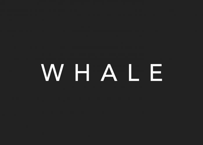 Whale Global logo design by Ryan Paonessa