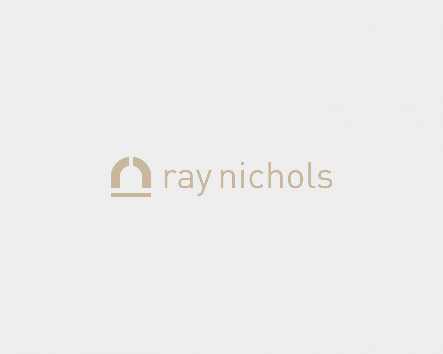 Ray Nichols logo and visual identity